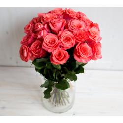 Букет 25 роз Амстердам (Эквадор 40 см)