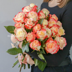Букет 25 роз Кабаре (Эквадор 60 см)