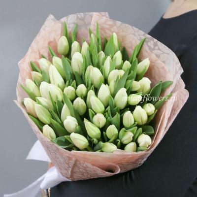 Букет тюльпаны белые 51 шт