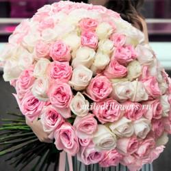 Монобукет из 101 пионовидной розы O'Hara