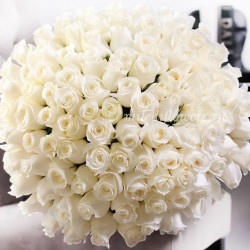 Букет 101 белая роза Прауд (Эквадор 40 см)