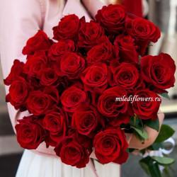 Букет 25 красных роз Эксплорер (Эквадор 40 см)