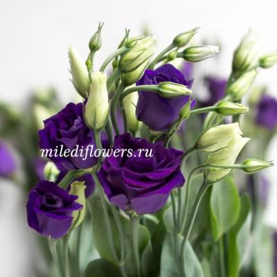Лизиантус Rosita Blue